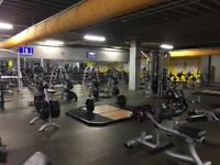 Xercise4less Gym Membership - Only £11.99 Per Month - Edinburgh West - Includes 2 PT Sessions!