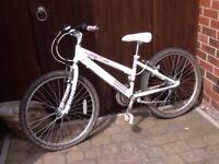 Girls SHIMANU RALEIGH KRUSH 6 speed gear bike 24 inch cost £200