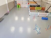 Happy Pets Doggy Dog Doggie Day Care Centre - Plymouth - Insured, Licensed, Vet Checked