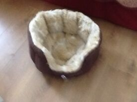 Puppy Kitten or small Dogs Bed