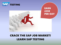 CRACK THE SAP JOB MARKET, EARN £250 PER DAY BECOME SAP TESTER