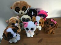 f49973e7d96 Collection of assorted Beanie Boos - all in very good condition.