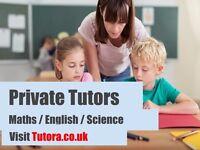 Expert Tutors in Maldon - Maths/Science/English/Physics/Biology/Chemistry/GCSE /A-Level/Primary