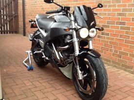 BUELL XB12ss. REDUCED PRICE