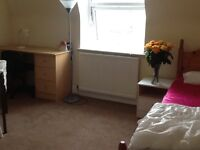 Very nice and clean room ,bills included