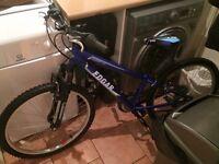 Edgar bike
