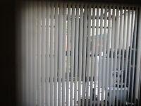 Patio doors vertical blind