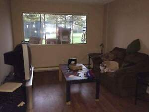 Looking for someone to take over my lease! Cornwall Ontario image 1