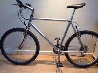 X Large Claud butler mountain bike.
