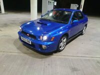 Subaru impreza wrx 2.0l turbo swap for a family diesal