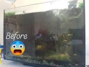 Fish Tank Maintenance Balgowlah Manly Area Preview