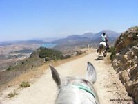 horse riding holidays in southern spain from 150pp special