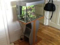 Full set up fish tank and stand
