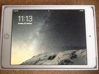 iPad mini 3 wifi +cellular