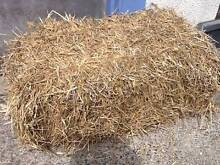 Half bale (8kg) straw hay Lane Cove Lane Cove Area Preview
