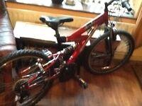 Boys Equator 15 speed mountain bike