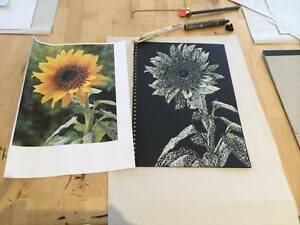 Private Art Classes Sassafras Latrobe Area Preview