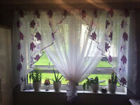 New net curtain