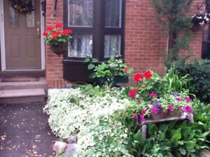 Townhouse for rent for 6 month in Toronto at lakeside