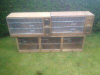 Bird breeding boxes