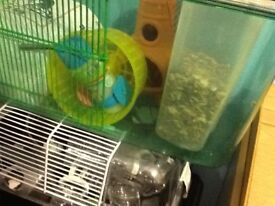 LARGE 3 TRIER GERBILARIUM / HAMSTER CAGE WITH LOTS OF EXTRAS . IN GOOD CONDITION .