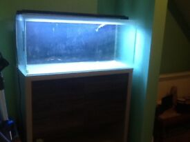 Fluval m90 marine fish tank and cabinet