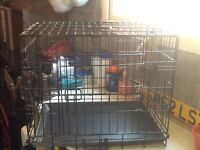Puppy traing crate