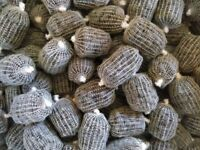 20x Small Pre Filled & Tied PVA bags with Halibut Pellets
