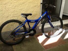 Child's bike mode Giant MTX 225