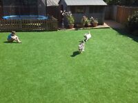 artificial grass supply and install