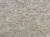 Oatmeal/Beige/LBrown Carpet - Nearly NEW