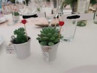 Wedding items/bits/stuff/table decorations: 38 x Artifical Succulents/Plants in White Buckets