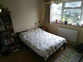 Two rooms in vegie/vegan house available now/end Nov £655 including bills in Crouch End