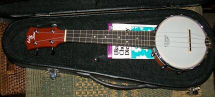 Epiphone 5 String Banjo Other Musical Instruments Gumtree