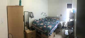 Summer sublet close to McGill