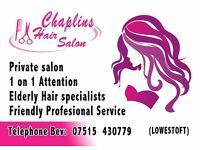 Private Hair dressing Salon for the Elderly