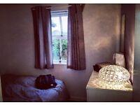 Cosie Modern Double bedroom