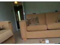 2 Seater or 3 Seater Sofa for Sale