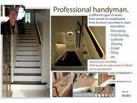 PROFESSIONAL HANDYMAN (HIGH QUALITY )