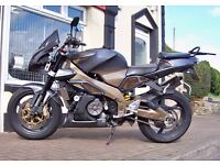 2004 Aprilia RSV Tuono 1000 Fighter. Very well maintained.