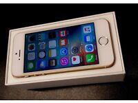 iPhone SE 64GB GOLD UNLOCKED BRAND NEW APPLE SEPTEMBER 2017 WARRANTY