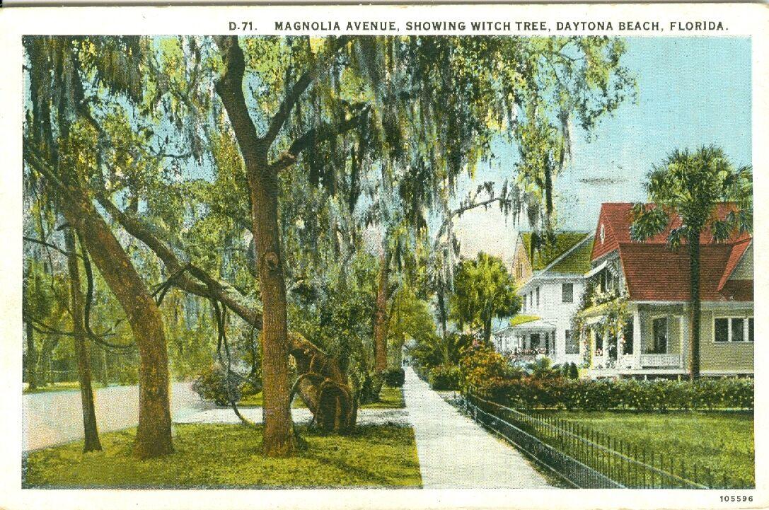 Magnolia Avenue Daytona Beach Fl