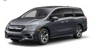 2019 Honda Odyssey Touring for sale or take over lease