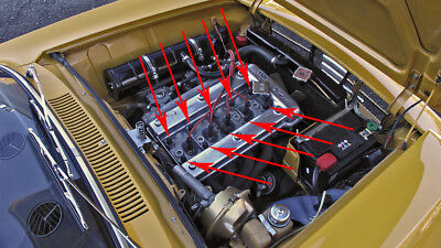 10 MUTTER ZYLINDERKOPF SPIDER GIULIA GT ALFA ROMEO MOTOR 1300 1600 1,3 1,6 (Best Price Car Covers)