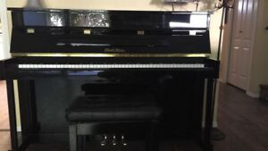 PEARL RIVER EBONY PIANO