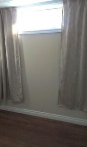 Two Bedroom Basement Suite Plus Den with Lots Of Extra Storage. Edmonton Edmonton Area image 4