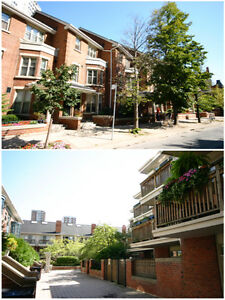 Executive Townhouse, Central Location, Near Bay St &  Bloor.