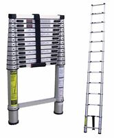 Wanted: telescopic ladder