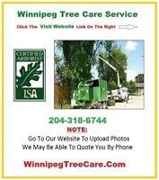 ★ FREE Quote -> Winnipeg Tree Care -> We Do It All!