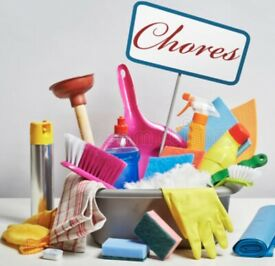 Victorias cleaning service